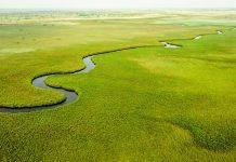 """Blick auf das Okavango-Delta, das auch den Namen """"größtes Naturparadies der Welt"""" trägt, Botswana - © CHG / Fotolia"""