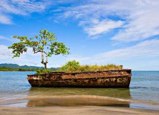 Ein rostiges Schiffswrack mit einem Baum am Strand von Puerto Viejo, Costa Rica - © Antonio Jorge Nunes / Shutterstock