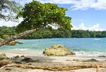 Strand im Manuel Antonio Nationalpark, Costa Rica - © Colin D. Young / Shutterstock