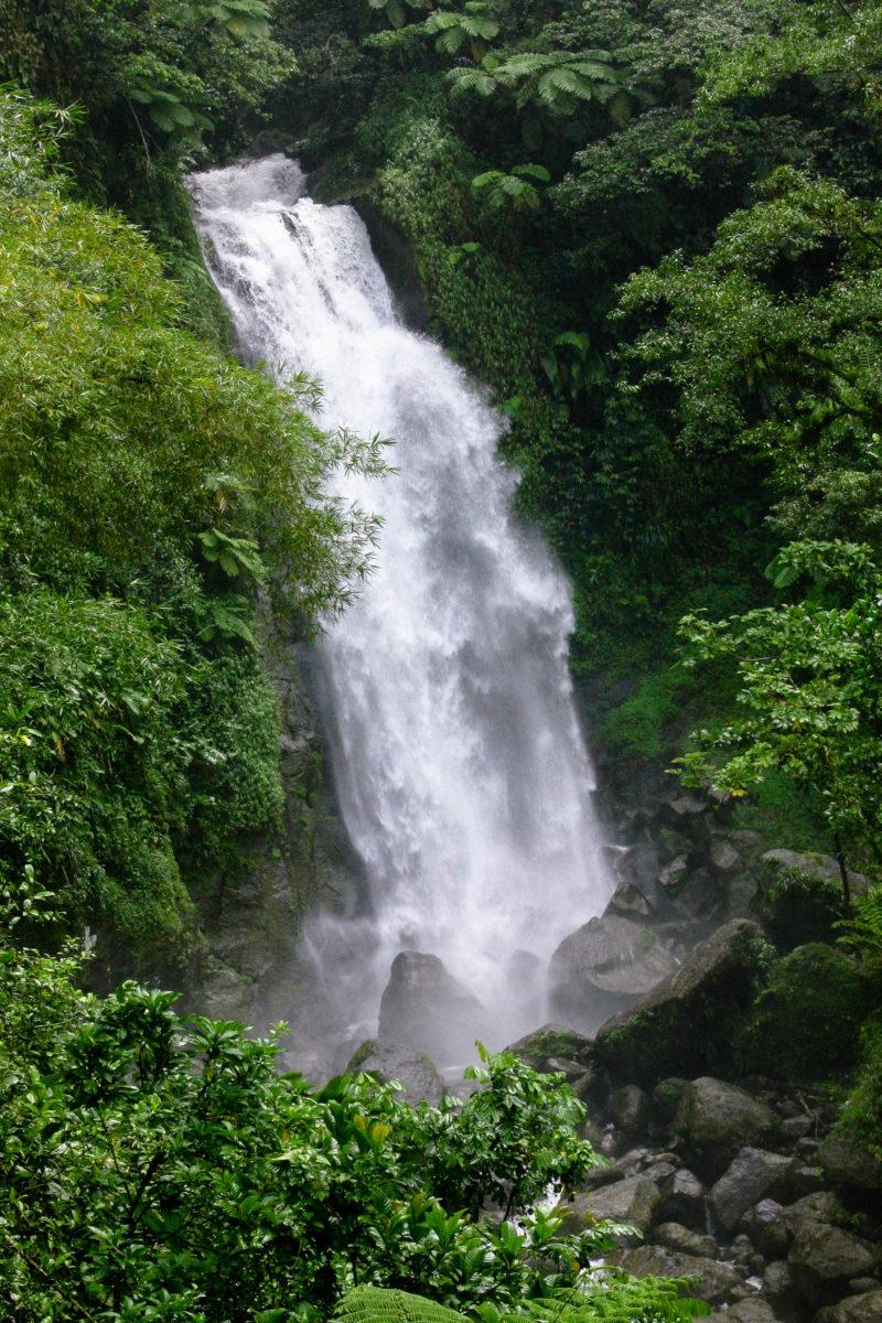 """Der """"Vater-Wasserfall"""" der Trafalgar-Fälle auf Dominica ist nahezu doppelt so hoch wie der """"Mutter-Wasserfall"""" - © Nina B / Shutterstock"""