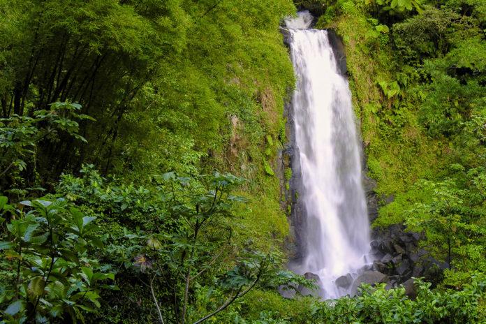 Die Trafalgar-Fälle auf der karibischen Insel Dominica bestehen aus zwei Wasserfällen, hier der