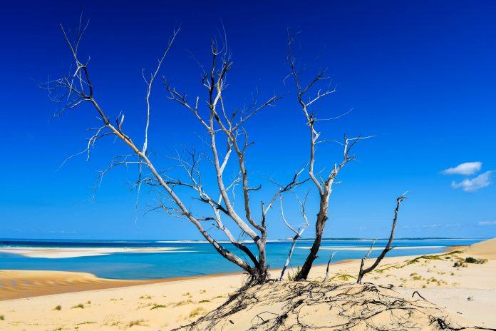 Der Bazaruto-Nationalpark erstreckt sich über sechs traumhafte Inseln vor der Küste Mosambiks und bietet atemberaubende Tauchspots und Bilderbuchstränden - © Felix Lipov / Shutterstock