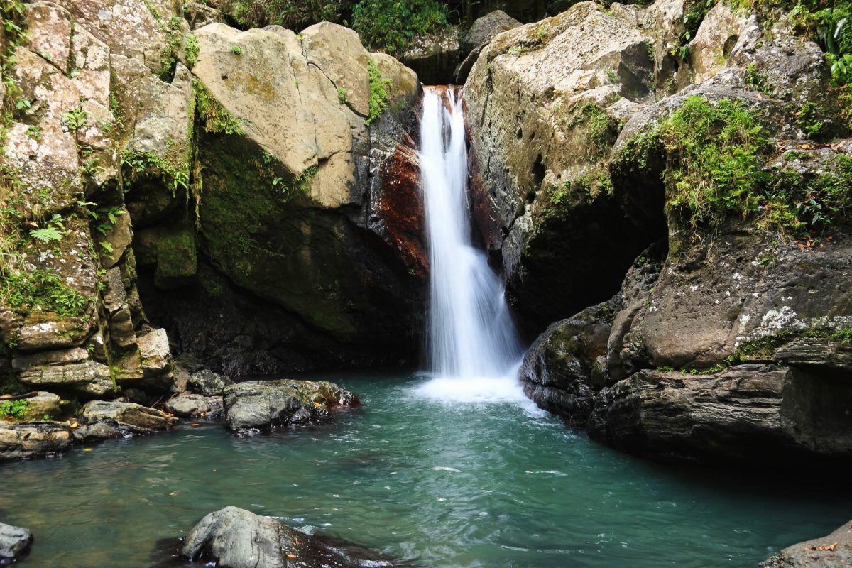 Der Wasserfall La Mina im El Yunque National Forest, Puerto Rico - © Colin D. Young / Shutterstock