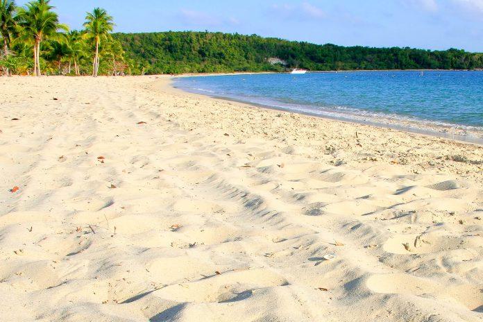 Strand auf der Insel Vieques, Puerto Rico - © kkaplin / Shutterstock