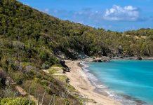 Der Colombier Beach zählt zu den abgeschiedensten und ruhigsten Stränden auf Saint Barthelemy - © Stephanie Rousseau / Shutterstock