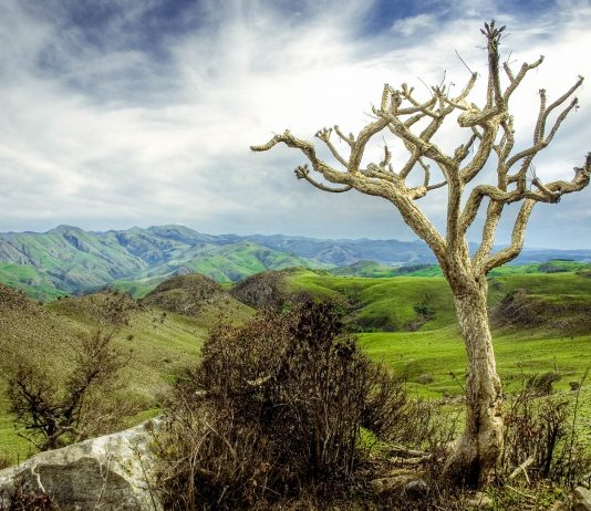 Die Stadt Lobamba in Swasiland liegt inmitten der gebirgigen Landschaft des Ezulwini-Tals  - © Peky / Shutterstock