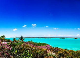 Vom Sapodilla-Hügel auf Provicendiales hat man nicht nur einen traumhaften Blick auf das Meer, sondern kann auch historische Steingravierungen entdecken, Turks- und Caicos-Inseln - © Jo Ann Snover / Shutterstock