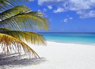 Einer der vielen Traumstrände auf Anguilla - © FER737NG / Shutterstock