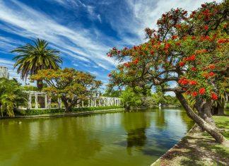 Das Herz des Japanischen Gartens von Buenos Aires bildet ein See, der von farbenprächtigen Koi-Karpfen bevölkert wird, Argentinien - © Anton Petrus / Shutterstock