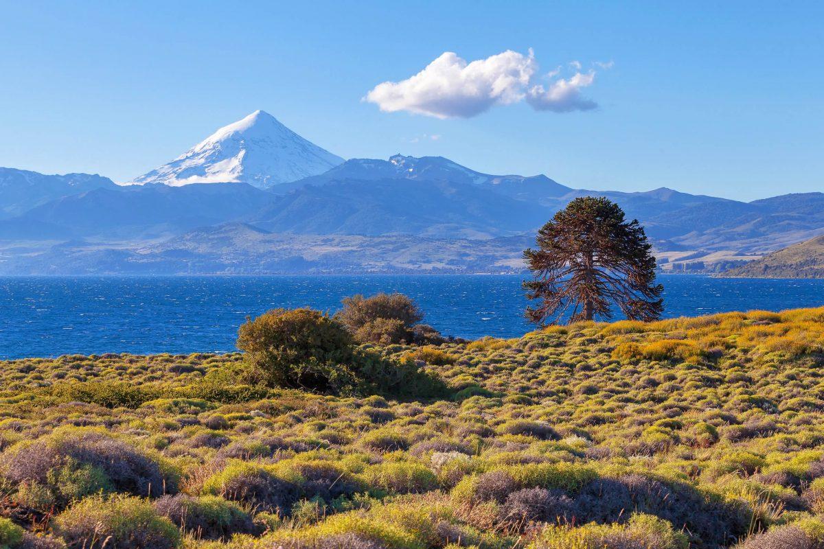 Der schneebedeckte Lanin im gleichnamigen Nationalpark gilt dank seiner symmetrischen Form als schönster Vulkan Argentiniens - © sunsinger / Shutterstock