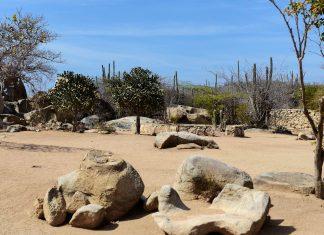 Die imposanten Felsen von Casibari und Ayo in der Mitte von Aruba liegen scheinbar in der Landschaft verstreut - © James Camel / franks-travelbox
