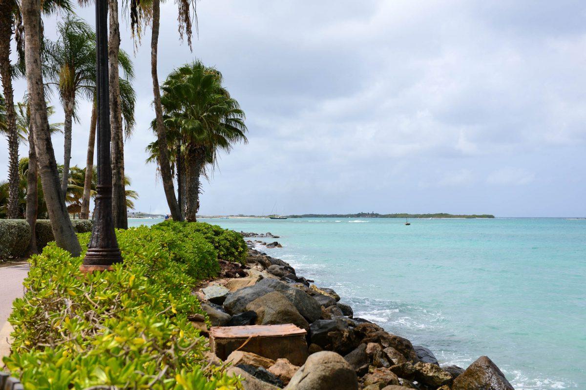 Der Wilhelmina-Park in Oranjestad, Aruba, wurde von der Regierung eingerichtet und lädt mit Spazierwegen und Bänken am Meeresufer zum Flanieren ein - © James Camel / franks-travelbox