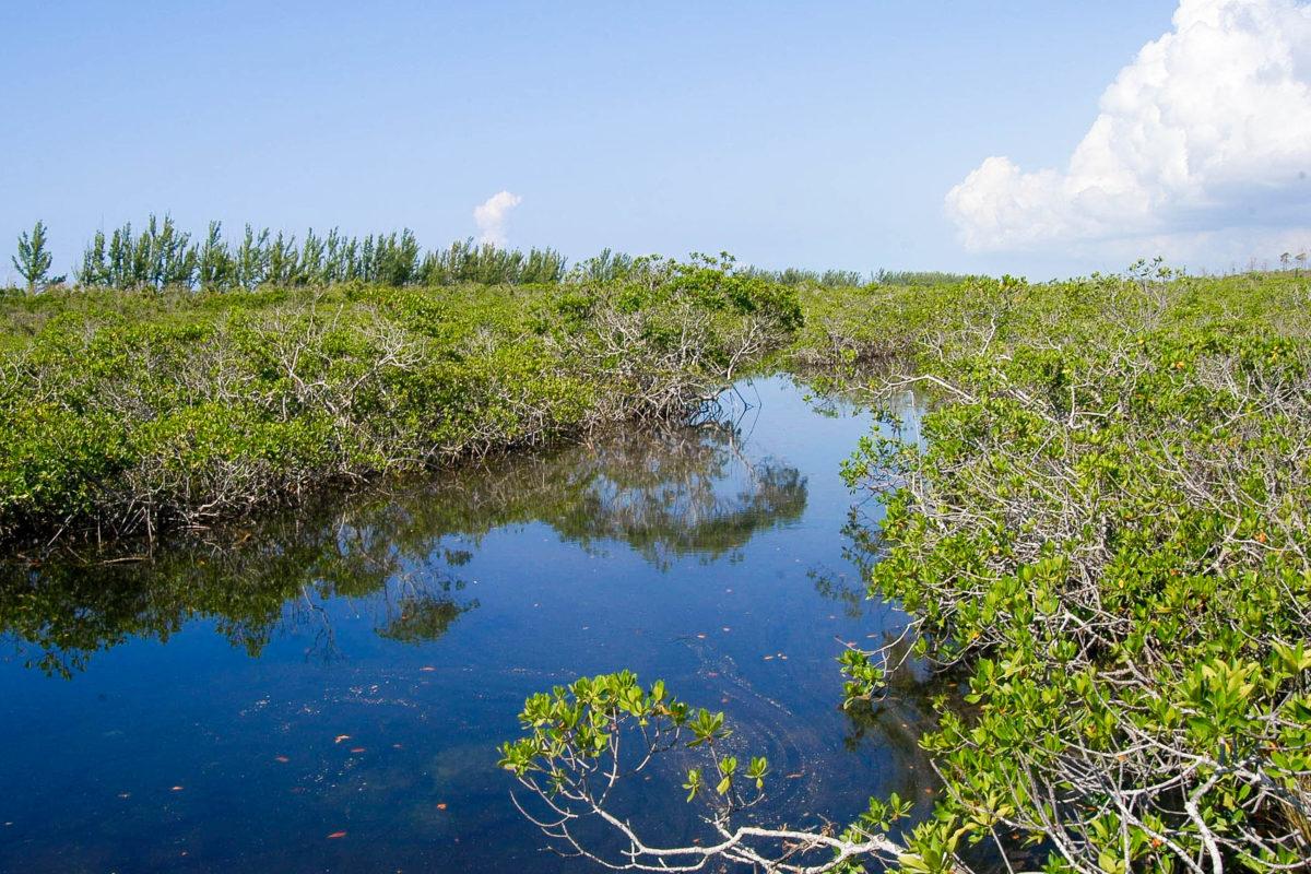 Lucayan Nationalpark, Bahamas - © Albo / Fotolia