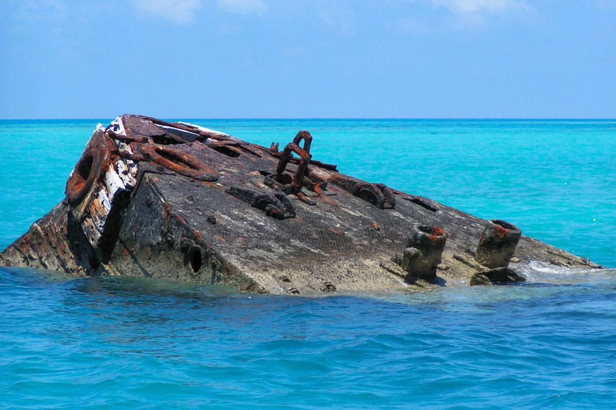 """Das in den 1890ern gesunkene Schiffswrack """"The Vixen"""", wird von riesigen Fischschwärmen bevölkert, Bermuda - © Julie Fine / Shutterstock"""