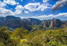 Anden, Chaco und der Amazonas-Regenwald formen im Amboro Nationalpark eine fantastische Artenvielfalt - © Juan Pablo Bueno / Shutterstock