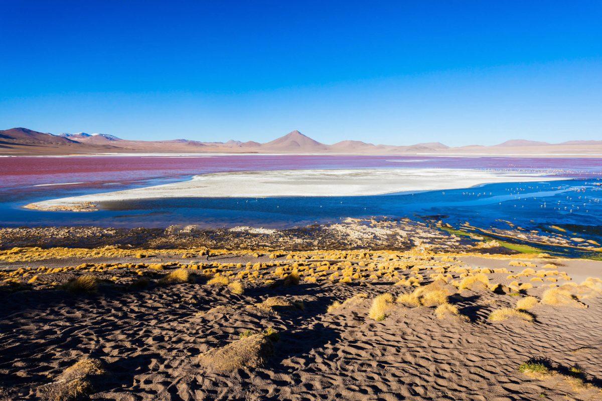 Die hellen Flächen in der Laguna Colorada in Bolivien bestehen aus der für Salzseen typischen Natriumverbindung Borax - © saiko3p / Shutterstock