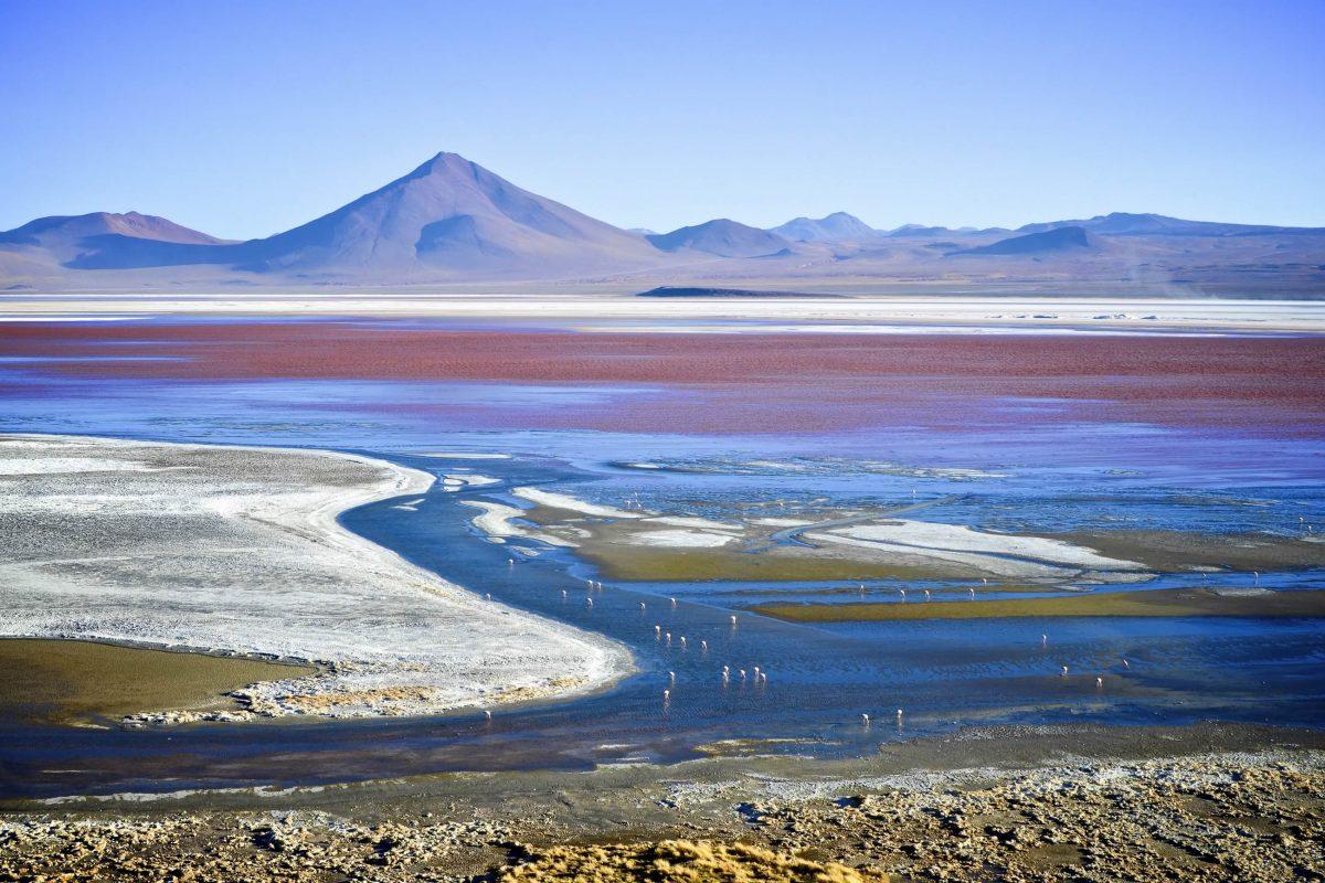 Touren zur 4.278m hoch gelegenen Laguna Colorada starten von Tupiza oder Uyuni in Bolivien, oder San Pedro de Atacama in Chile - © marktucan / Shutterstock