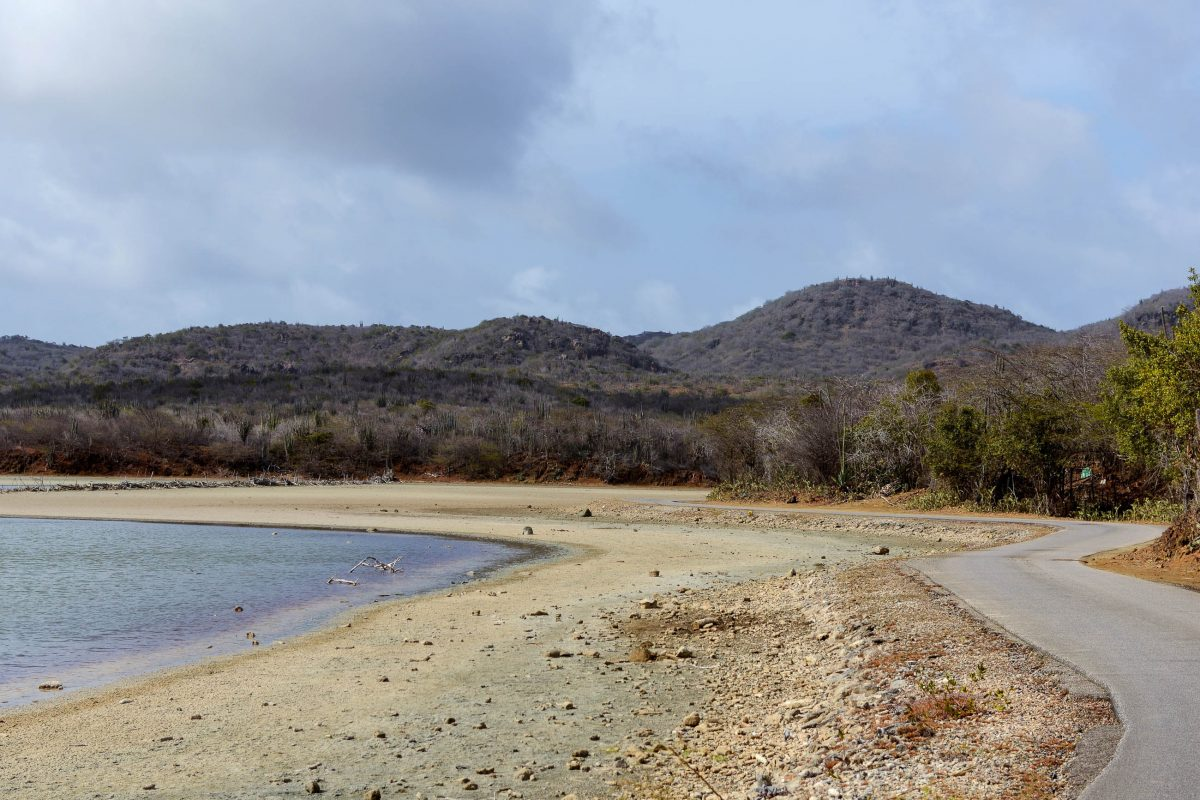 Am Ufer des Goto-Meer führt eine asphaltierte Straße entlang, ansonsten empfiehlt sich für den Washington Slagbaai Nationalpark auf Bonaire ein Allradantrieb - © James Camel / franks-travelbox