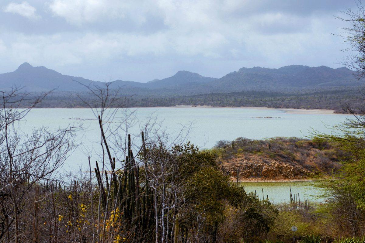 Im Washington Slagbaai Nationalpark können 5 verschiedene Ökosysteme erkundet werden: Strände, Sanddünen, Mangrovenwälder, Salzfelder und Waldgebiete, Bonaire - © James Camel / franks-travelbox