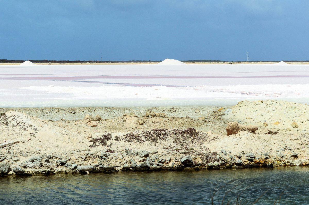 Pekelmeer im Süden der karibischen Insel Bonaire zieht mit seinen Salzfeldern eine Vielzahl von Flamingos an - © James Camel / franks-travelbox