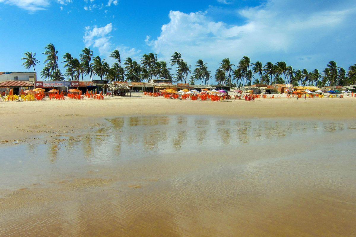 Die langgestreckte Reihe an smaragdgrünen Palmen bietet am Praia Atalaia Nova bei Aracaju, Brasilien, eine besonders schöne Kulisse zum Baden - © FRASHO / franks-travelbox