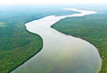 Der Amazonas führt ein Fünftel des gesamten Süßwasservorrats der Erde mit sich, Brasilien - © Cmon / Fotolia