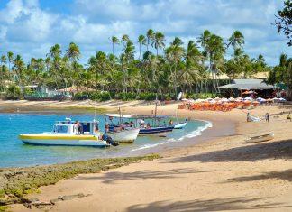 Der Traumstrand Praia do Forte liegt etwa 80km vom Zentrum von Salvador da Bahia entfernt, Brasilien - © Vitoriano Junior / Shutterstock