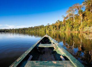 In Manaus starten Touristenboote zu Ausflügen ins Amazonasbecken, Brasilien - © Christian Vinces / Shutterstock