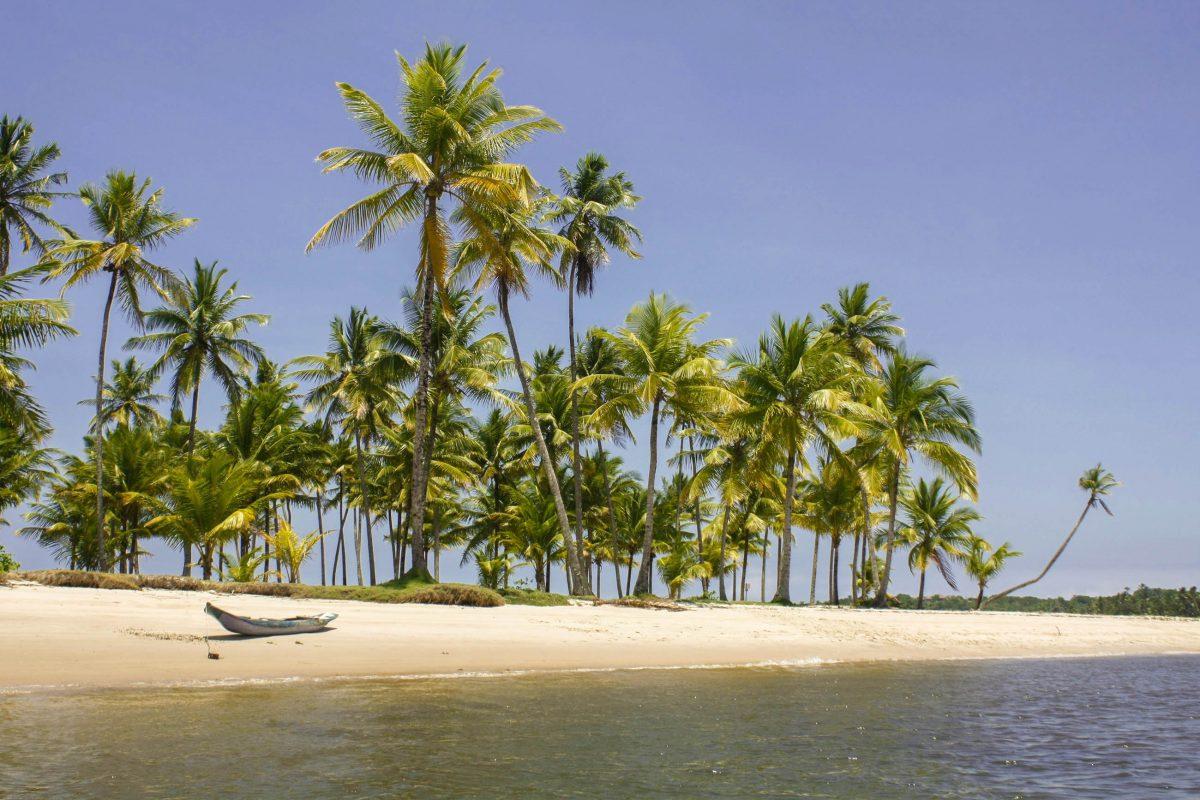 In Morro de São Paulo auf der Insel Tinharé in Brasilien lässt es sich hervorragend unter Kokospalmen entspannen - © Bitanga87 / Shutterstock