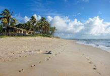 Abgesehen von einigen Pousadas und kleinen Lokalen gibt es keine Infrastruktur am Praia Itacimirim, Brasilien - © FRASHO / franks-travelbox