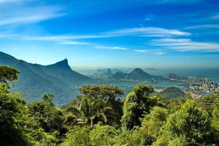 Der Tijuca Nationalpark erstreckt sich auf einer Fläche von knapp 40 Quadratkilometern über die Hügel rund um Rio de Janeiro, Brasilien - © Dmitry V. Petrenko / Shutterstock