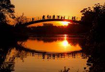 Traumhafter Sonnenuntergang im Ibirapuera-Park in Sao Paulo, Brasilien - © wideweb / Shutterstock