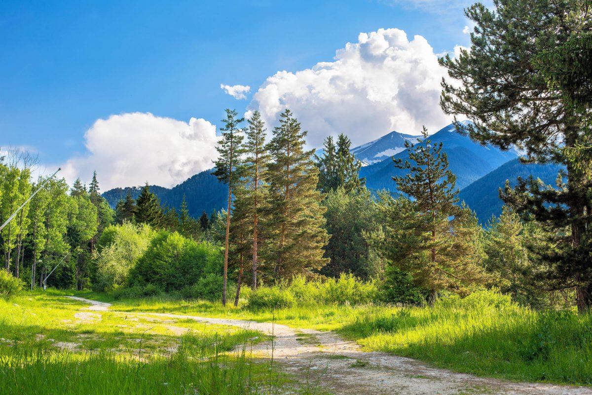 In dem rund 27.000 Hektar großen Pirin Nationalpark bei Bansko führt ein weitläufiges Wegenetz zu zahlreichen Sehenswürdigkeiten, Bulgarien - © Nataliya Nazarova / Shutterstock
