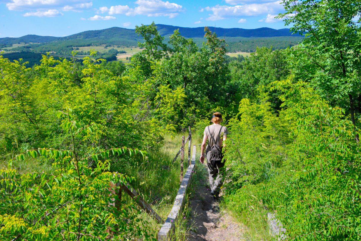 Vom Parkplatz führt ein Weg durch Wiesen und Wald den Hügel hinauf zum Steinkreis von Dolni, Bulgarien - © FRASHO / franks-travelbox