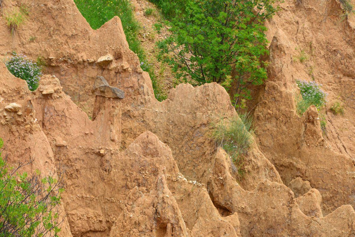 Die faszinierenden Erdpyramiden von Stob entstanden nach der letzten Eiszeit aus einem Sand-Lehm-Gemisch und sind ständig in Bewegung, Bulgarien - © FRASHO / franks-travelbox