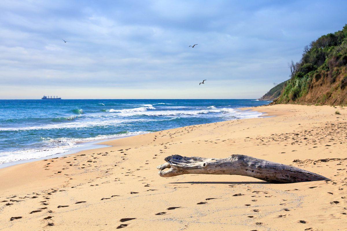 Strandabschnitt an der Goldküste in Bulgarien - © Andrey Bandurenko / Fotolia