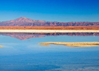 Laguna Chaxa im Naturreservat Reserva Nacional Los Flamencos im Norden von Chile - © Nataliya Hora / Fotolia