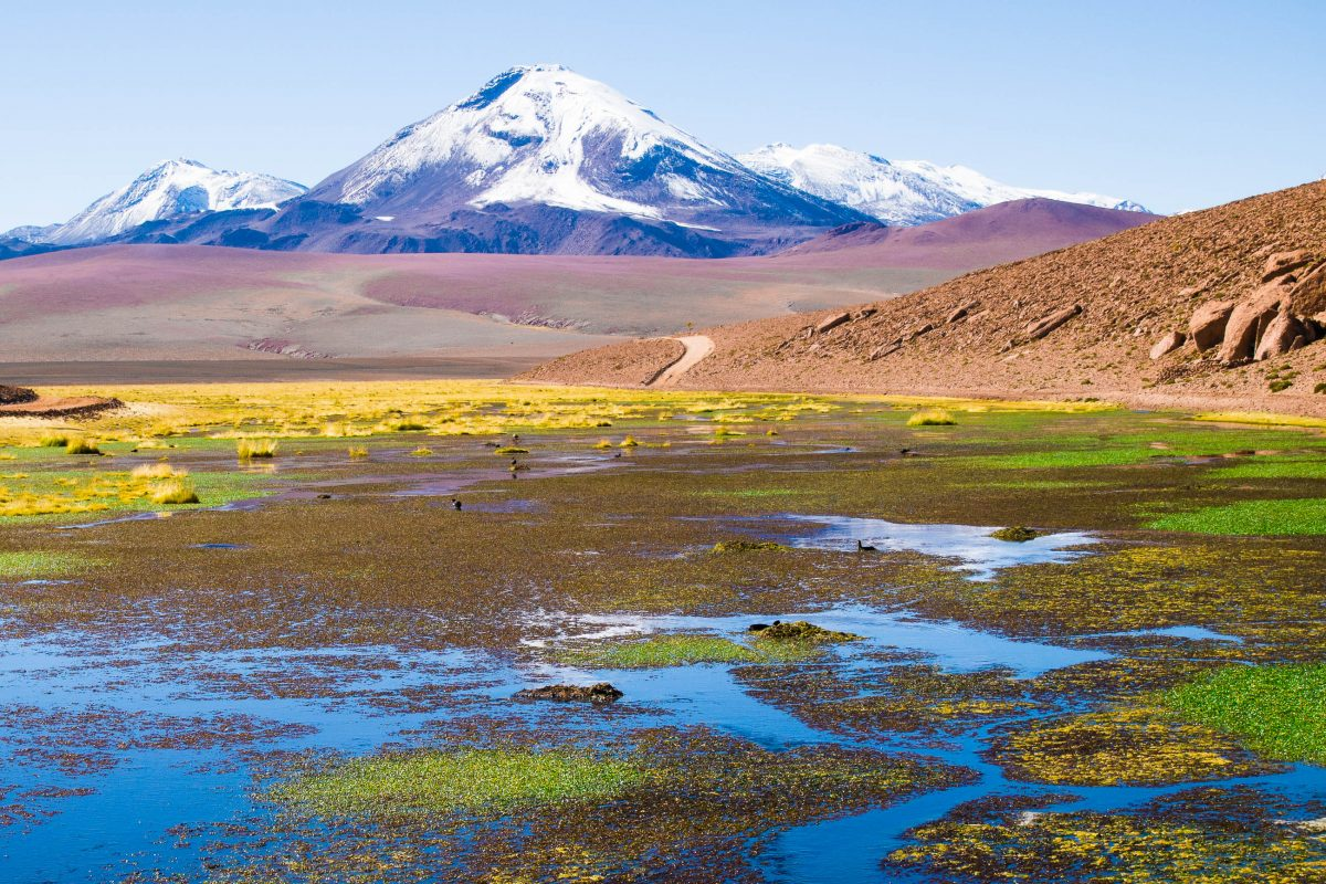 Lauca Nationalpark, Chile - © Cheapman_mike / Shutterstock