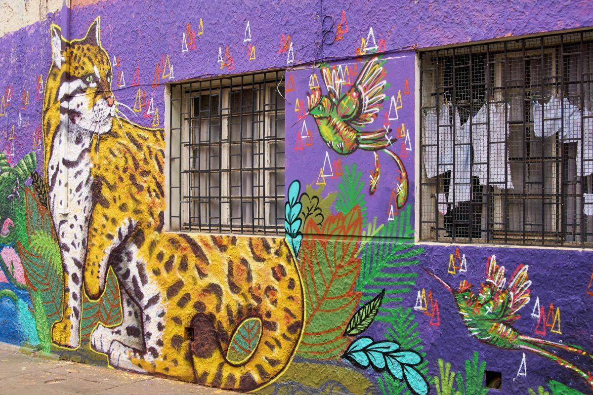 Um unschöne Kritzeleien oder Schäden am Mauerwerk zu übertünchen haben die Bewohner von Valparaiso kurzerhand Künstler engagiert, Chile - © Anton_Ivanov / Shutterstock