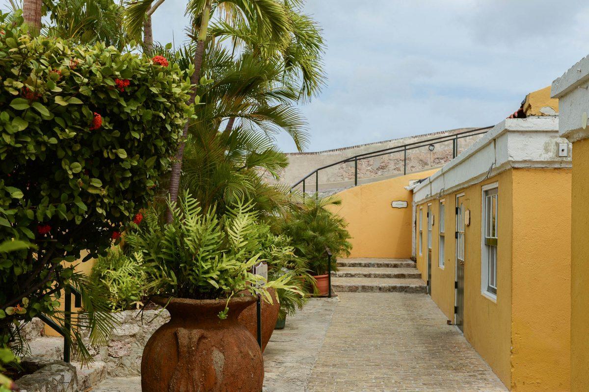 Das Fort Nassau auf Curaçao ähnelt mit seiner üppigen Bepflanzung heute fast mehr einem botanischen Garten als einer Festung - © James Camel / franks-travelbox