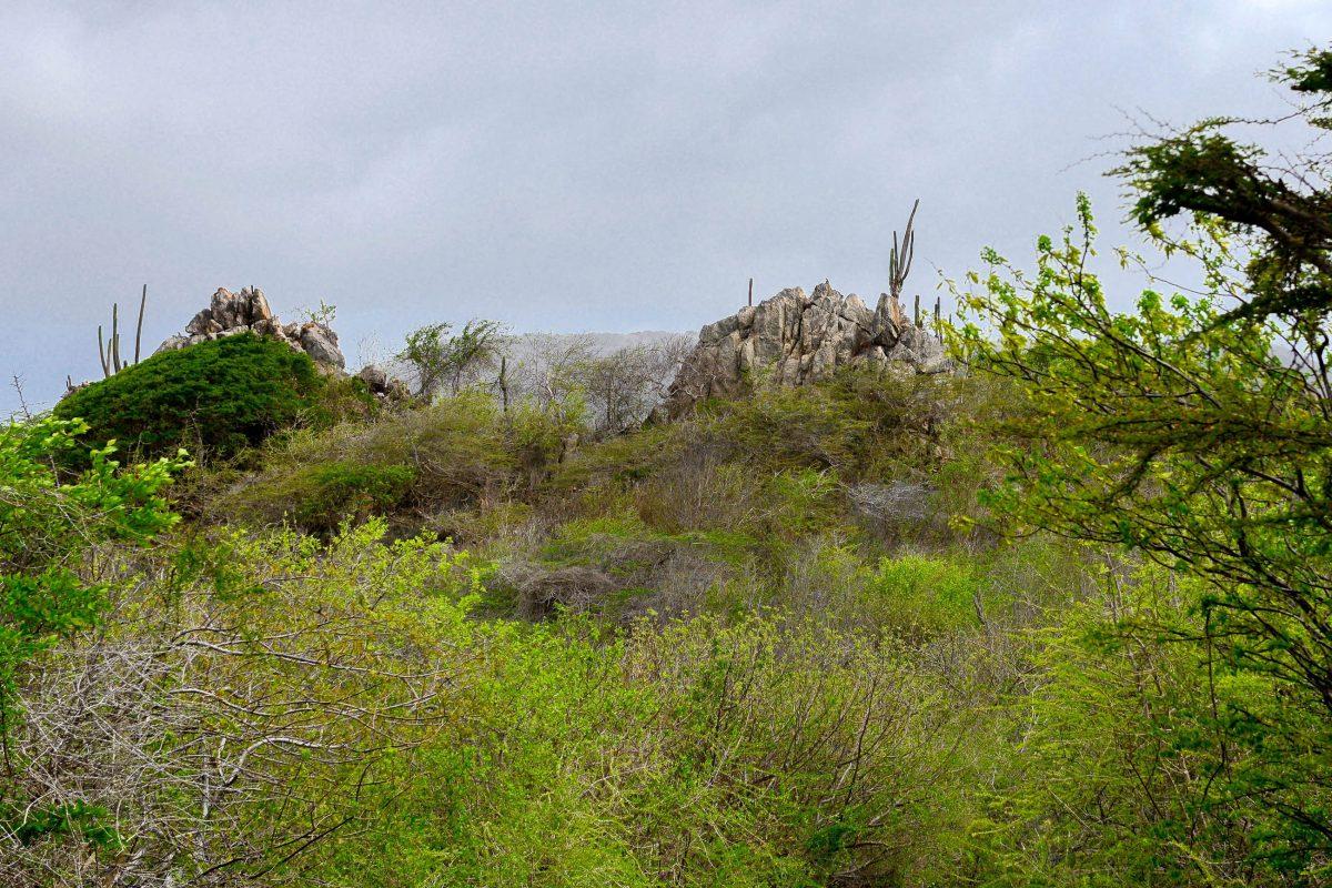 Die markanten Felsformationen im Christoffelpark sind von der Straße aus gut auszumachen, Curaçao - © James Camel / franks-travelbox
