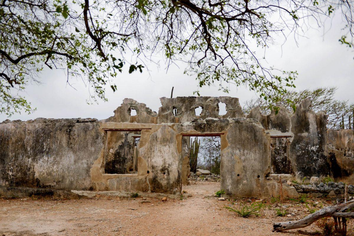 Die Ruinen des Landhauses Zorgvlied im Christoffelpark auf Curaçao verströmen eine gespenstische Aura - © James Camel / franks-travelbox