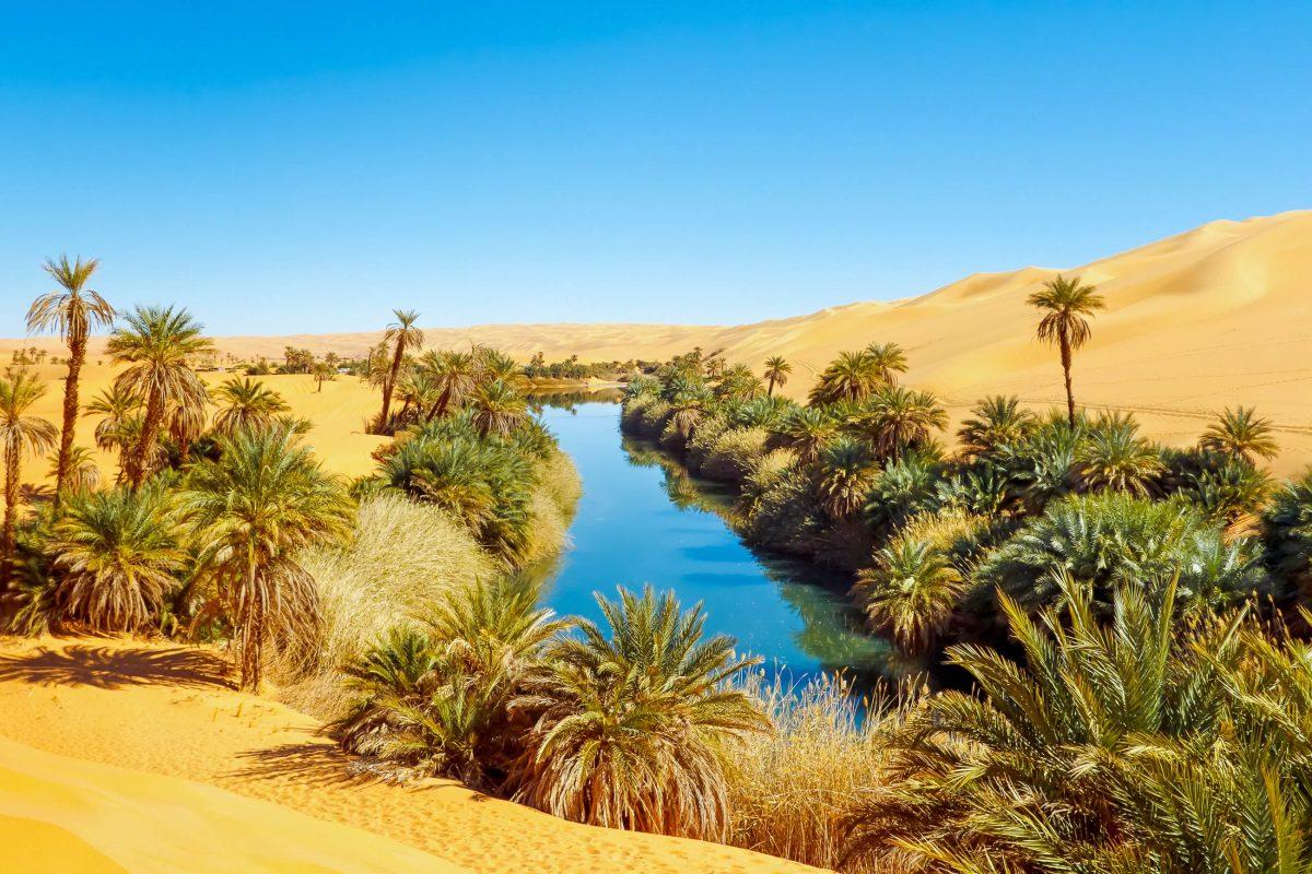 Der See Umm al-Ma in der Sahara liegt im Oasengebiet Ubari im Südwesten von Lybien und bietet deutlich bessere Lebensbedingungen - © Patrick Poendl / Shutterstock