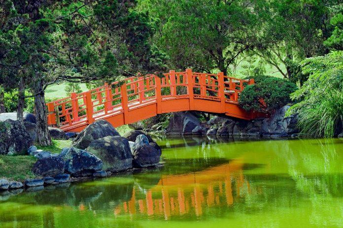 Der Botanische Garten in Santo Domingo ist die grüne Lunge der Stadt, Dominikanische Republik - © Daniel Alvarez / Shutterstock