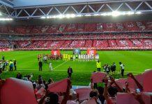 Das Stade Pierre Mauroy wurde als Heimstadion des OSC Lille im August 2012 eröffnetund ist einer von zehn Austragungsorten der Fußball EM 2016 in Frankreich - © Liondartois CC BY-SA3.0/Wiki