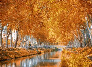 Als architektonische Meisterleistung, die sich harmonisch in die Natur einfügt, wurde der Canal du Midi im Süden von Frankreich zum Weltkulturerbe erklärt - © Giancarlo Liguori / Shutterstock