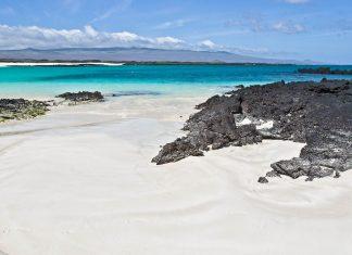 Der Puerto Chino Strand im Süden der Galapagos-Insel San Cristobal ist ein Rückzugsort für Seelöwen, Schildkröten und einer Vielzahl von Seevögel - ©  jele / Shutterstock