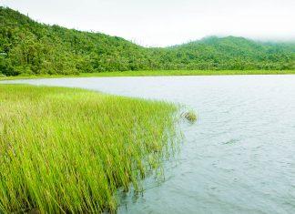 Grand Etang See im gleichnamigen Nationalpark, Grenada - © PHB.cz / Fotolia