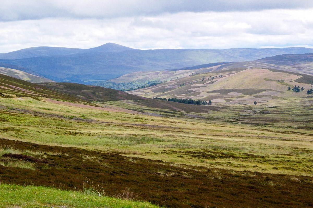 Der Cairngorm Nationalpark, Großbritanniens größter Nationalpark, in den Grampian Mountains in Schottland ist durch üppiges Grün geprägt - © flog / franks-travelbox