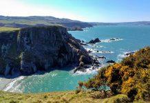 Der Pembrokeshire Coast Path an der Küste von Wales führt die meiste Zeit über Felsen, die von Höhlen durchzogen sind, Großbritannien - © Hogyn Lleol CC BY-SA3.0/Wiki